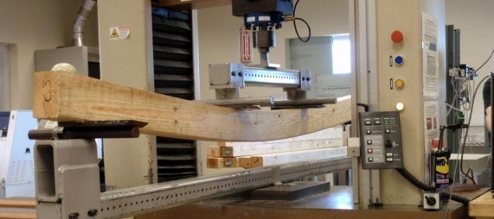 Fyzikální a mechanické vlastnosti dřeva